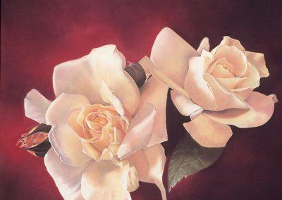 "© Rose Zivot Champagne Pear 31"" x 38.5"""