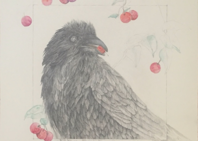 "© Colleen Campbell Corvid malus sylvestris 20, 2020, 22""w x 30""h, Graphite and Watercolour"
