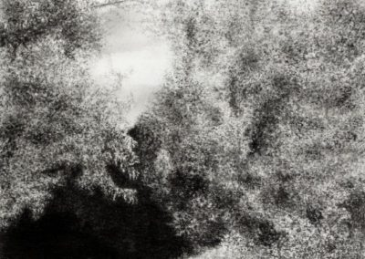 © Gerald St. Maur Sunlit Walk XVII